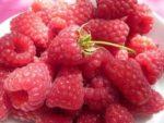 Nutrition - Avec la framboise, conjuguez plaisir et équilibre