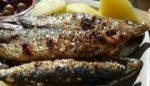 Cet été, craquez pour la sardine