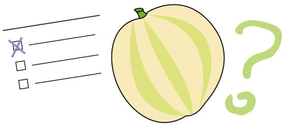 Quiz n°47 - le melon