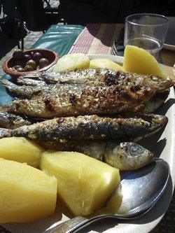 Nutrition : Le poisson : Quels atouts ?