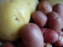 La pomme de terre, une énergie à partager en famille