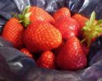 Nutrition - les 5 atouts de la fraise