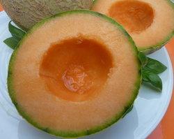 Nutrition - Découvrez les bienfaits du melon