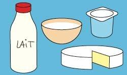 La famille des produits laitiers