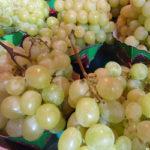 Profitez des antioxydants du raisin